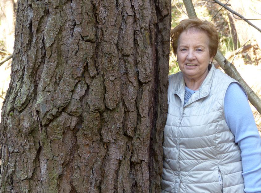 Propietarios Forestales. María Teresa Gandarias Arana y la Gestión de sus fincas en Bizkaia
